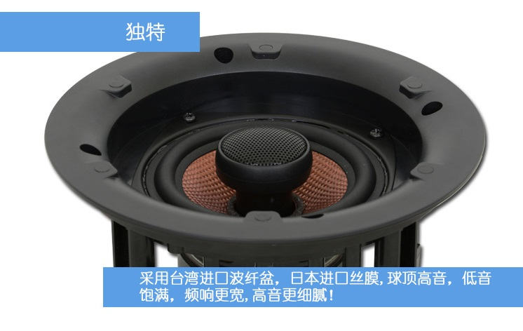 DSE  VX 65 g2 可调指向隐藏式同轴扬声器